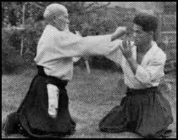 Đôi điều về kỹ thuật Atemi trong Aikido